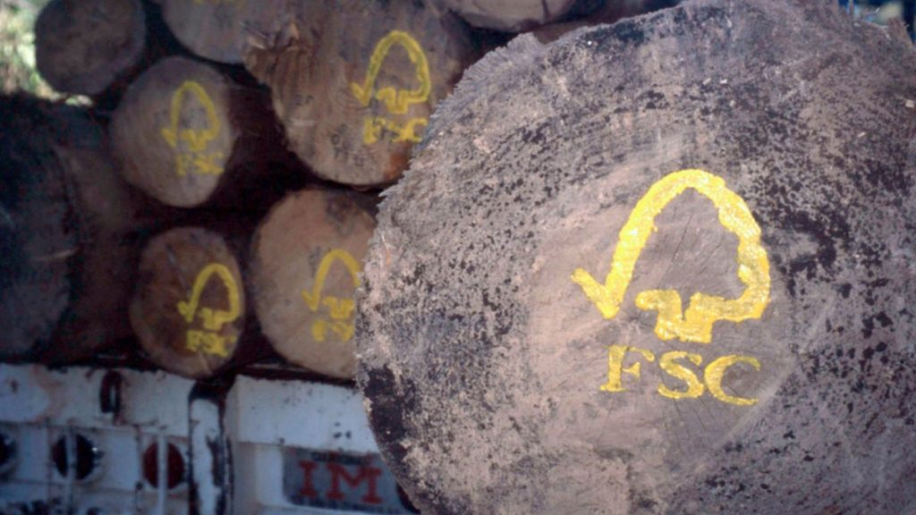 FSC logs, Mexico