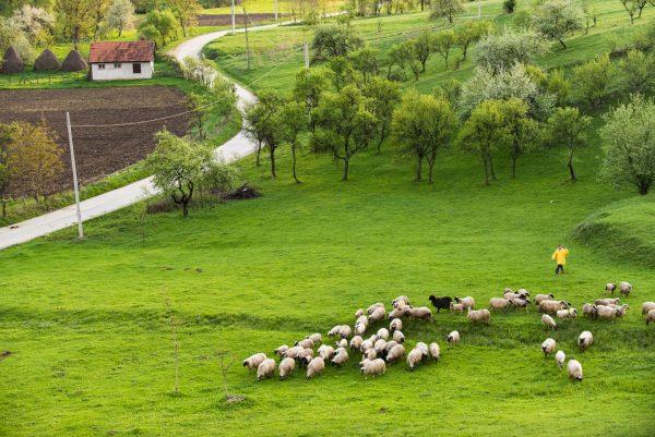 Satul Sub Margine ©Bogdan Comanescu