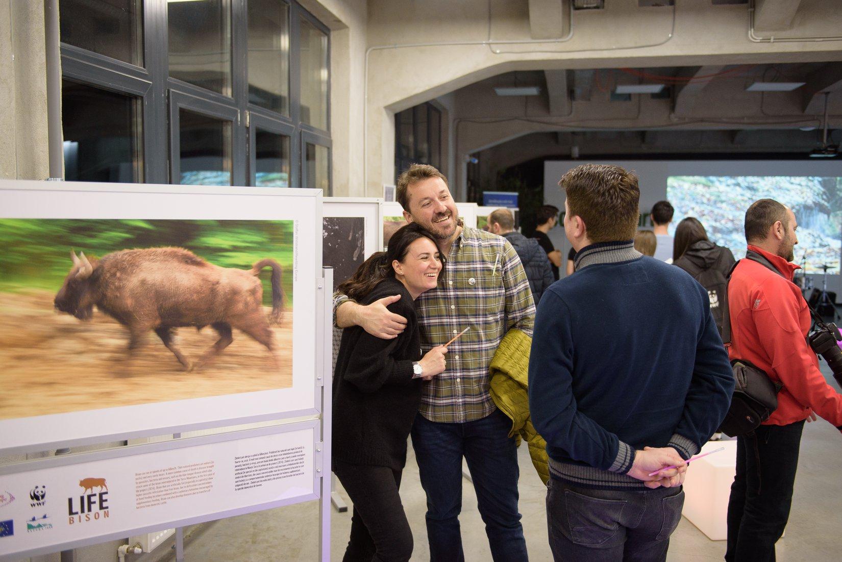 Expozitia despre reintroducerea zimbrilor Life Bison
