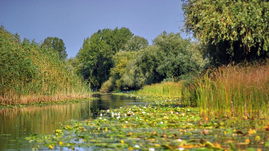 canal-dunare-cristian-mititelu-raileanu-1920x1080