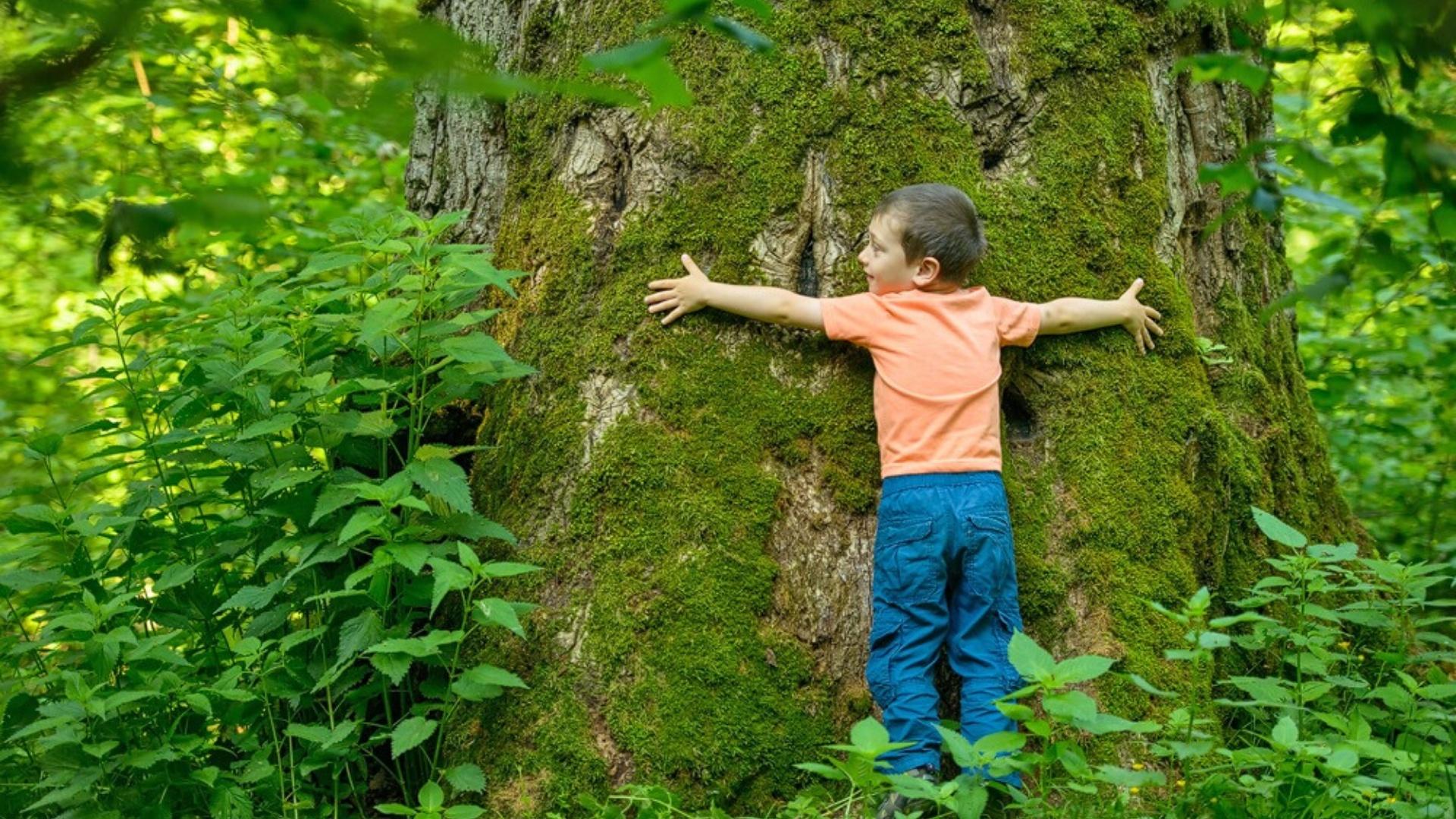 copil-imbratisand-un-copac-dan-dinu-1920x1080