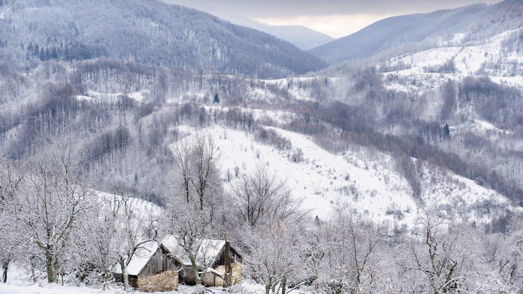iarna_in_munii_arcu__sit_natura_2000__copyright_obligatoriu_bogdan_comnescu